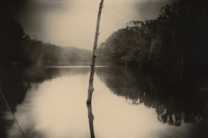 Sally Mann, Deep South, Untitled (Stick), 1998. Courtesy of the New Orleans Museum of Art: Collection of H. Russell Albright, M.D. © Sally Mann